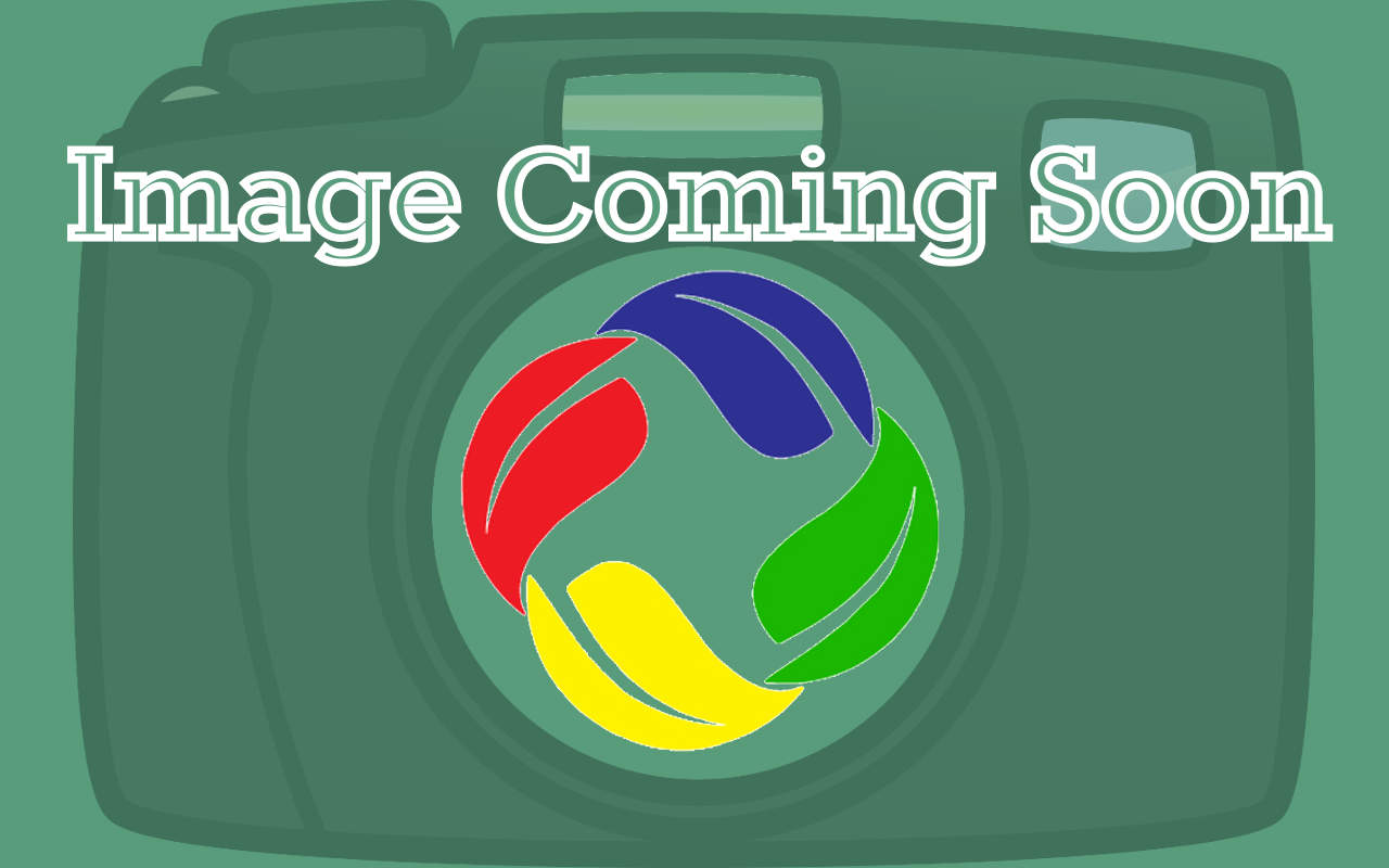 Image Coming Soon